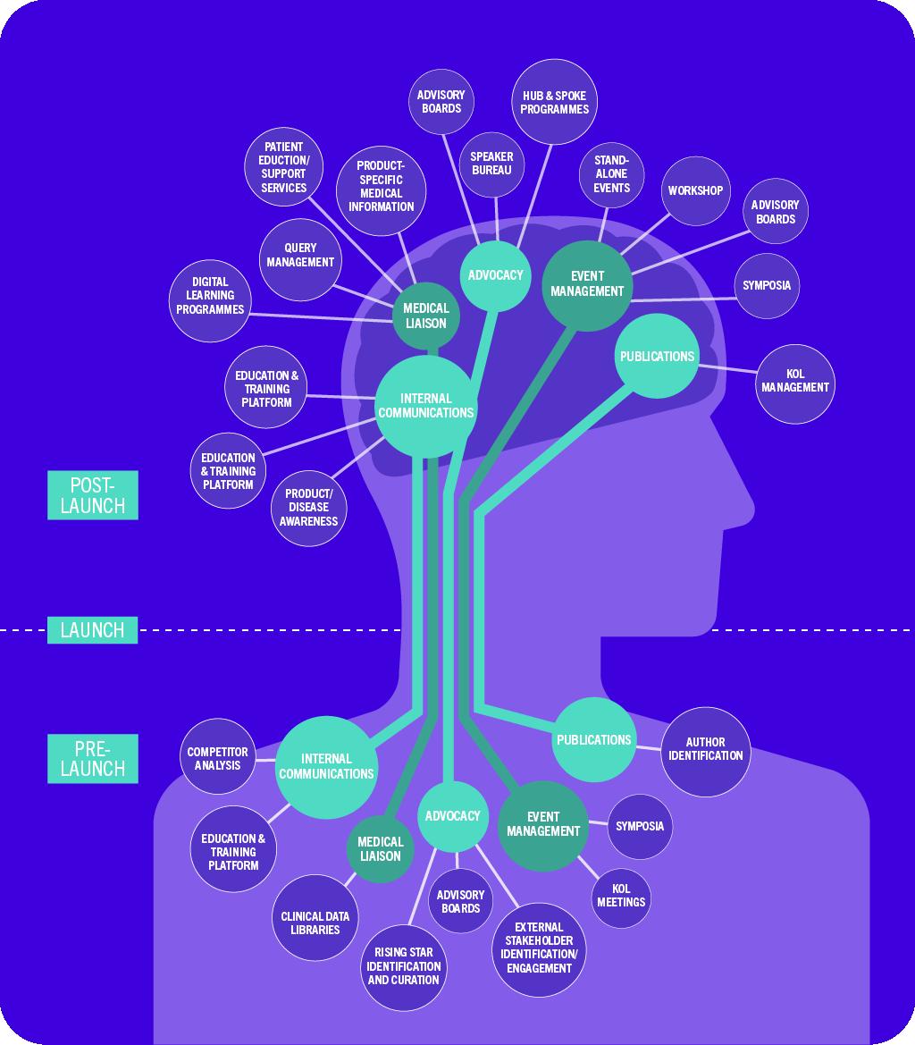 brain-infographic
